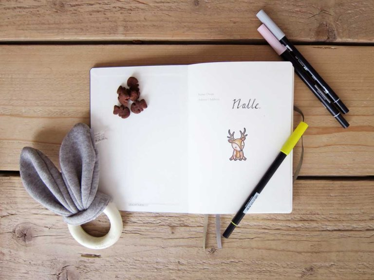 bullet journal for dogs, tips and ideas bullet journal, bujo pets