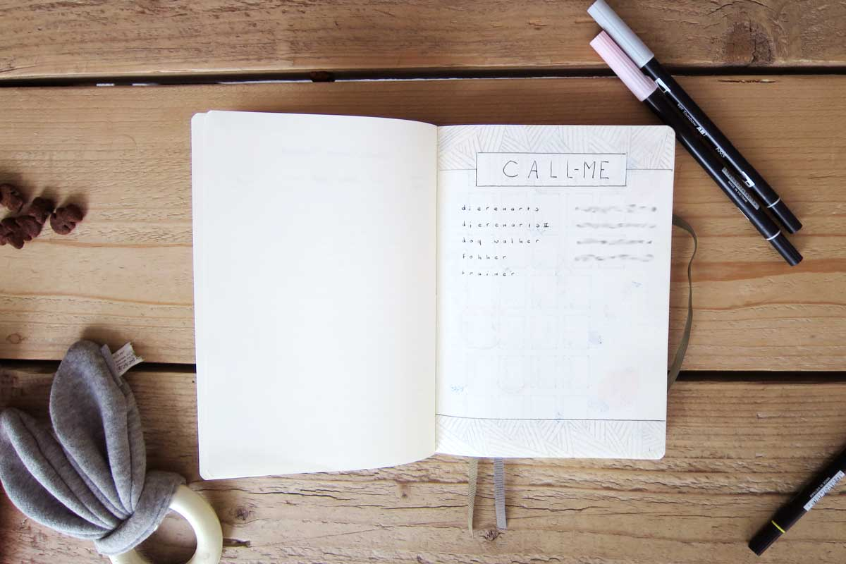 pet bullet journal, bullet journal ideas and tips